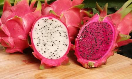 فاكهة التنين - Dragon Fruit